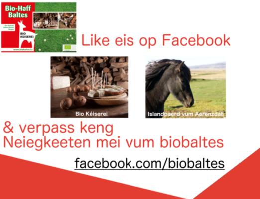 Daumen hoch auf Facebook